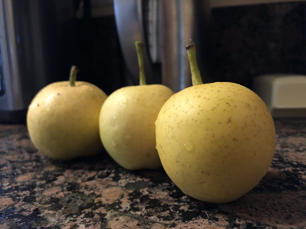 Three tiny Asian pears from a tree in my backyard